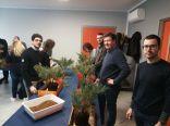 Preparazione del pre-bonsai