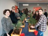 Workshop con pre-bonsai